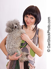 poodle - The dog sits on hands at the young smiling woman