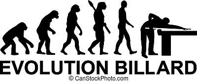 Pool Evolution Billard