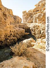 Pool of natural sea water