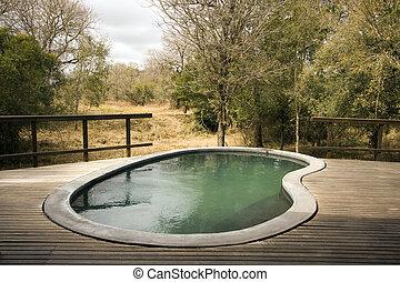 pool, op, houten dek