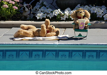 Poolside dogs - Two stuffed dogs soaking up the sun...