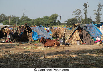 Poor dwellings - Poor makeshift dwellings in Gujarat India