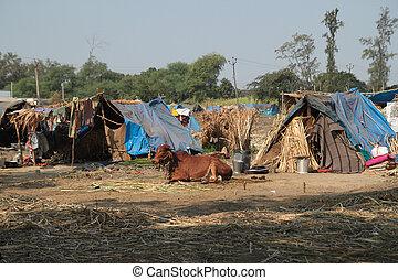 Poor makeshift dwellings in Gujarat India