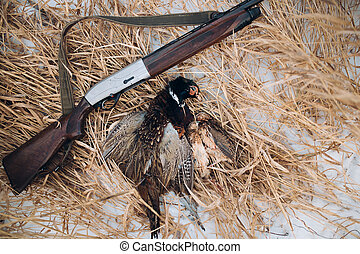 poor killed bird and a gun on the snow