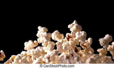 popcorn, springen, gegen, schwarz, zurück