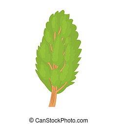 Poplar tree icon in cartoon style