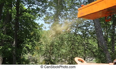 poplar trunks grinding machine to become chip Wood chipper...