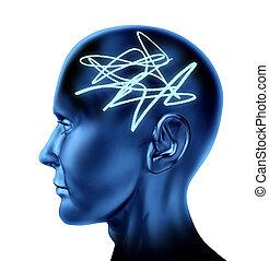 popletený, mozek