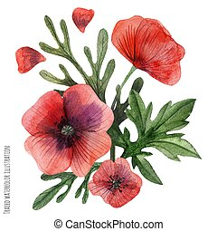 Poppies hand painted watercolor boutonniere - Traced vector,...