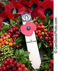Remembrance - Poppies laid at war graves on Remembrance Day