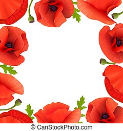 Poppies Stems and flowers frame. card border template with copy space. Pods, leaves, branch boxing