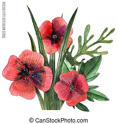 Poppy and grass watercolor boutonniere - Traced vector,...