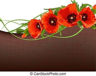 Floral background with red poppies. Vector illustration