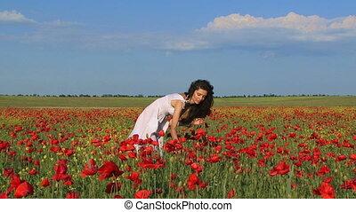Poppy bouquet