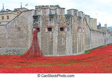 Poppy display Tower of London - London, United Kingdom -...