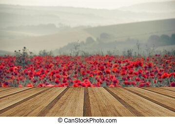 Poppy field landscape in Summer countryside sunrise with wooden