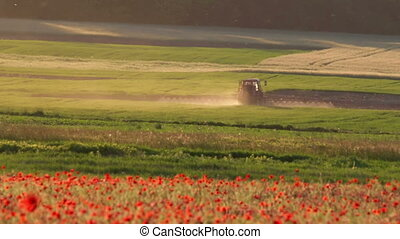 Poppy field with tractor