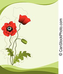 Poppy flower isolated on a green background