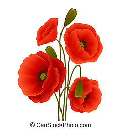 Poppy flower poster - Bunch of red romantic blooming poppy...