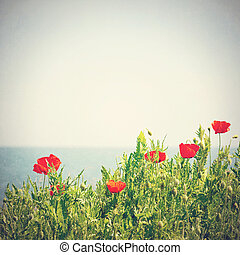 Poppy flowers in the sky. Vintage retro style