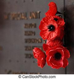 Poppy in Canberra War memorial museum memorial hall