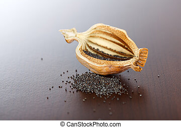 Poppy pod and seeds - Poppy seeds and pod cut in half