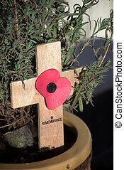 Poppy Remembrance decoration in plant pot.