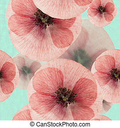 Pressed poppy flower isolated on white stock photographs search poppy seamless pattern texture of pressed dry flowers mightylinksfo Gallery