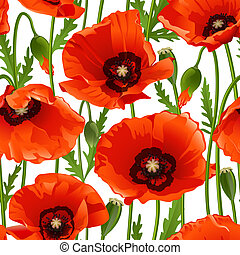 Poppy seamless pattern. Vector illustration