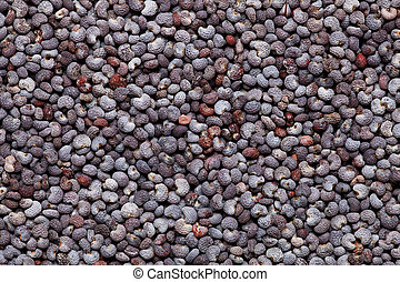 poppy seed background