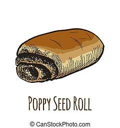 Poppy seed roll, sweet bun, full color hand drawn vector illustration