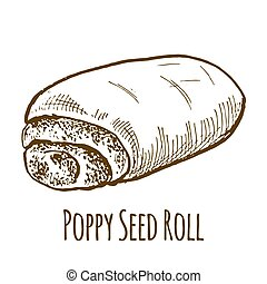 Poppy seed roll, sweet bun, hand drawn vector illustration