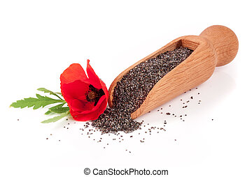 Poppy seeds in a wooden scoop with a flower