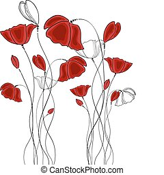 Poppy - Vector pictures with red poppy flowers