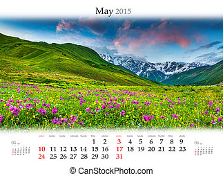 poppys, may., champ, fleurir, calendrier, 2015.