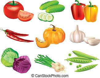 populair, groentes, vector, set
