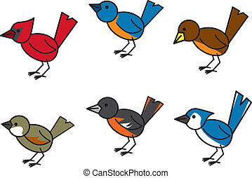 Popular Birds - Six common and popular birds found...