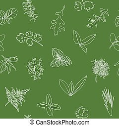Popular culinary herbs seamless pattern. realistic style. icon outline sketch on green. Basil, coriander, mint, rosemary, basil,