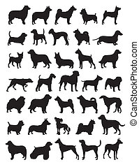 Popular dog breeds silhouettes - Popular dog breeds in...