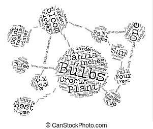 Popular Flower Bulbs text background word cloud concept