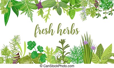 Popular Fresh Realistic herbs and flowers. logo label set. green silhouettes.