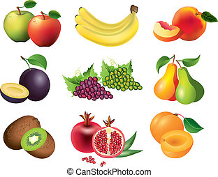 popular fruits vector set - popular fruits photo realistic ...