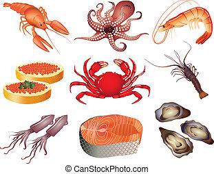 popular, mariscos, vector, conjunto