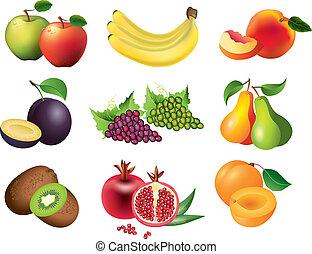 popular, vector, conjunto, fruits