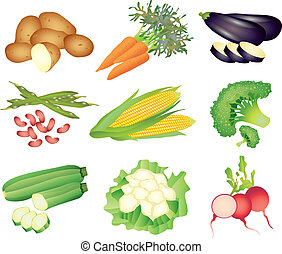 popular vegetables vector set - popular vegetables colorful ...