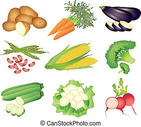 popular, vegetales, vector, conjunto