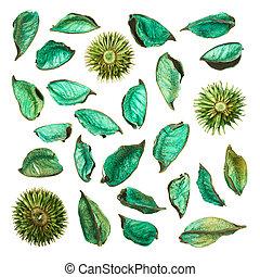 popurrí, hojas, aislado, mezcla, secado