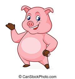 porca, apresentando, caricatura