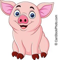 porca, caricatura, cute