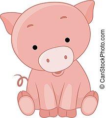 porca, ilustração, sentar